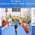 2013 Belfort ITU Long Distance Triathlon World Championships