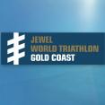 2017 Gold Coast ITU World Paratriathlon Series