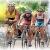 XXIII Triathlon Internacional Fiestas Julias