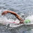 2017 Montreal Mens WTS - second swim lap
