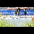 The best of Edmonton World Triathlon Grand Final…...