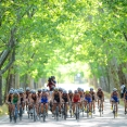 The Tri-Angle: Madrid 2013 Race Preview