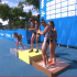 2014 ITU World Triathlon Grand Final Edmonton - Elite Women's Highlights