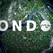 2013 London Promo