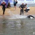 2011 Weihai ITU Triathlon Premium Asian Cup