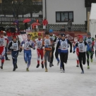 2008 Gaishorn am See ETU Winter Triathlon European Cham