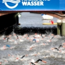 2009 Dextro Energy Triathlon - ITU World Championship Series Hamburg