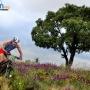 ETU Cross Triathlon European Championships - Announcement