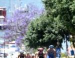 2018 Cagliari ITU Triathlon World Cup