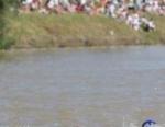 2005 Tiszaujvaros ITU Triathlon World Cup